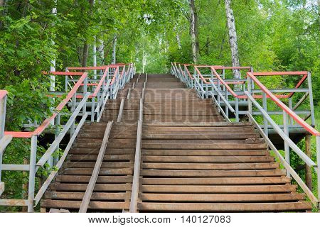 staircase through the woods in the park