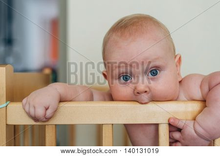 baby boy sanding in the cot and eats railing