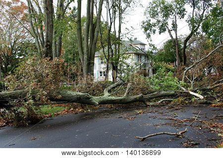 The effects of 100 MPH Winds on a neighborhood in Long Island, NY. Hurricane Sandy