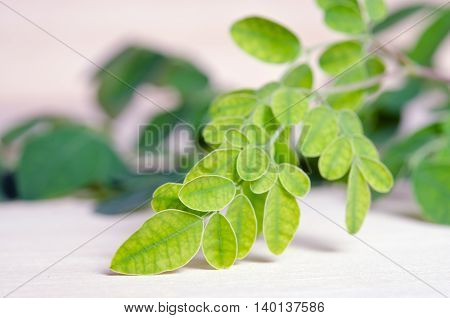 Moringa Leaf On Wooden Board Background