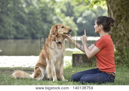 Woman training dog at the park