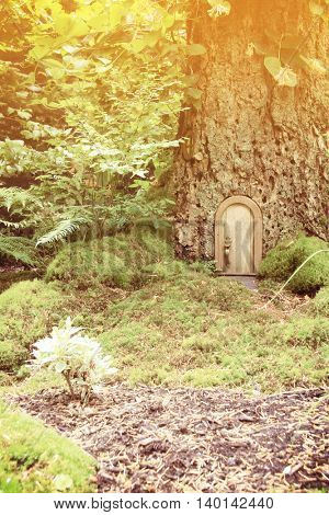 Vintage fairy tale door in a tree trunk. Also available in horizontal.