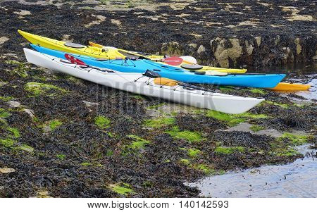 Several brightly colored sit-inside sea kayaks on a seaweed covered rock shelf in a sheltered rocky beach location