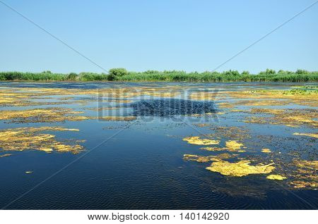 Danube Delta. Water Channel, Lake And Marsh, Romania