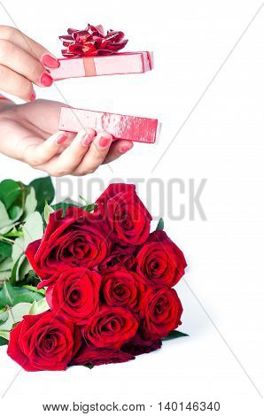 the red rose and female hand for gift everyone , isolated on white