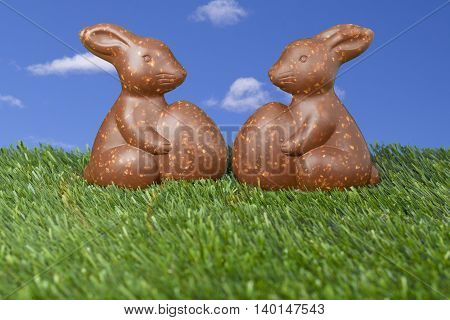 two chocolate bunny candies lying on the grass