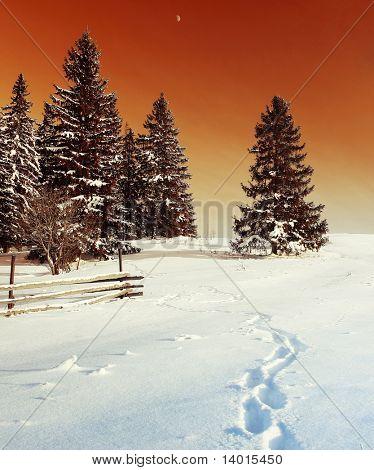 Pinos en nieve en colina bajo cielo Abstracto rojo