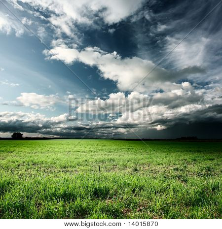 Storm clouds above meadow with green grass