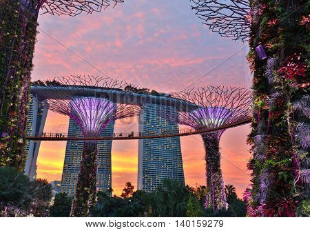 SINGAPORE - MAY 22, 2016: Supertrees at Gardens by the Bay. Singapore
