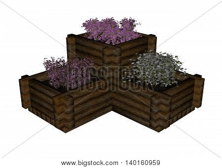 Plant and flowers in boxes isolated in white background - 3D render