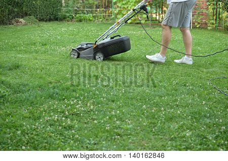 Man is mowing his lawn with a lawnmower in a private garden