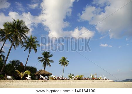 Tourist beach with white sand, palm trees and sun loungers