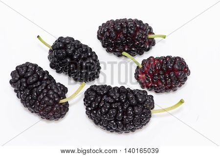 Mulberry fruit on a white background isolated