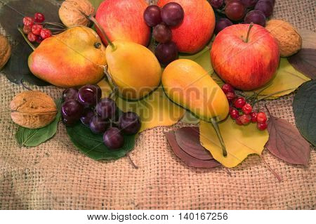 apples pears and walnuts on a sackcloth background