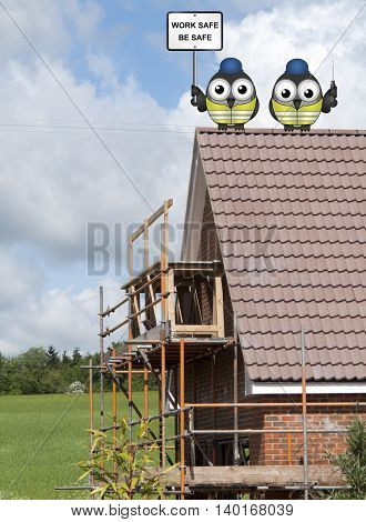 Comical bird construction workers perched on a roof of new build house with health and safety message work safe be safe sign