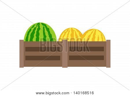Melon or yellow watermelon on wooden boxes vector in flat style design.  Isolated on white background.