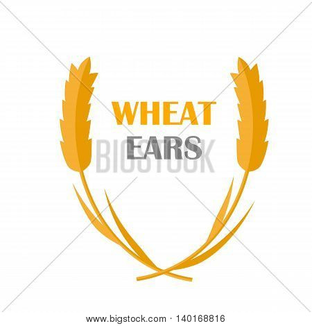 Wheat Ears vector banner in flat style design. New harvest, grain growing concept. Illustration for bakery, bread store, agricultural company logo design. Ripe ears with text on white background.