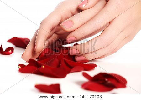 Beautiful Female Finger Nails With Pink Nail Closeup On Petals.