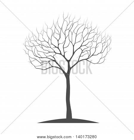 silhouette tree with twisted branches on a white background vector tree illustration