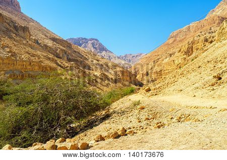 The tourist path among the huge rocky mountains of Judean Desert Ein Gedi Israel.