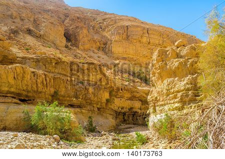 The steep of the rocky mountain in Ein Gedi oasis in Judean desert Israel.