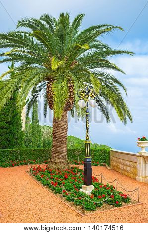 The scenic flower bed of Bahai Garden with the old style streetlight and the lush palm tree Haifa Israel.