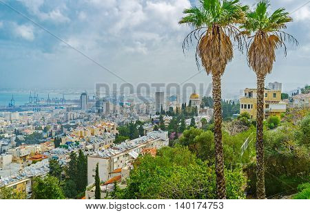 The view on the cloudy Haifa from the of Carmel Mount with two slender palms on the foreground Israel.