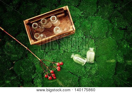A lot of these little glass bubbles are in a wooden box, juicy moss and next to a branch of red berries of Hypericum