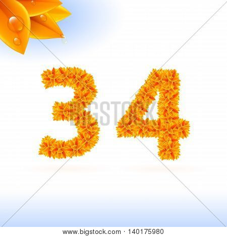 Sans serif font with autumn leaf decoration on white background. 3 and 4 numerals