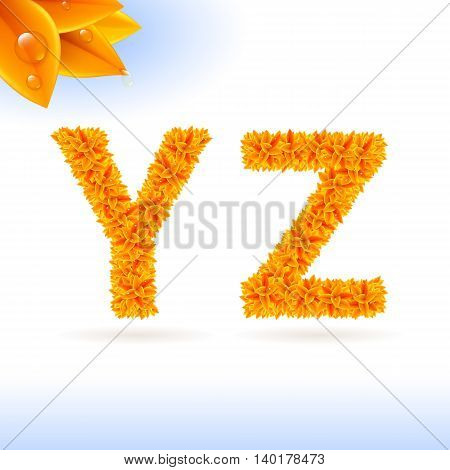 Sans serif font with orange leaf decoration on white background. Y and Z letters