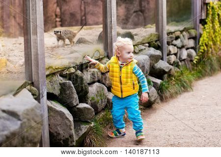 Little boy cute toddler kid watching hyena in the zoo on a cold autumn day. Child looking at animals in safari park.