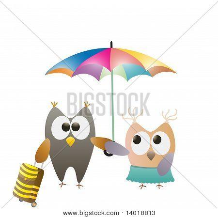 owls and umbrella
