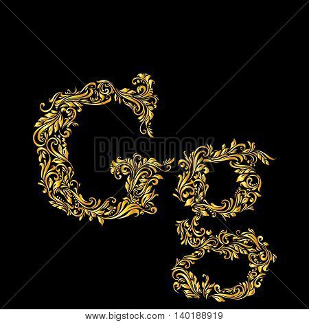 Richly decorated letter 'g' in upper and lower case on black background.