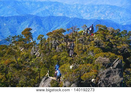 Ranau,Sabah Borneo-March 13,2016:Group of climbers move down by wooden stairs to Laban Rata hut after successfully completed conquering the summit of mountain Kinabalu at Ranau,Sabah on 13th March 2016