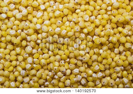 Dieting healthy eating concept. Millet groats as background texture.