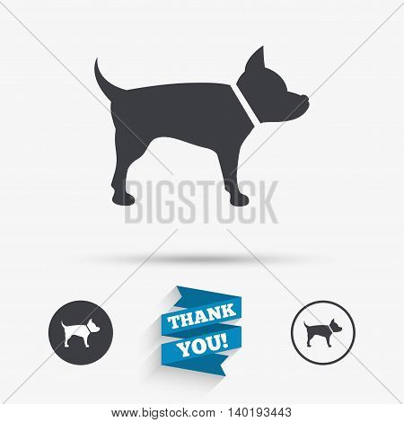 Dog sign icon. Pets symbol. Flat icons. Buttons with icons. Thank you ribbon. Vector