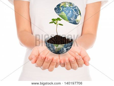 Hand hold young plant in earth isolated on white background (Elements of this image furnished by NASA)