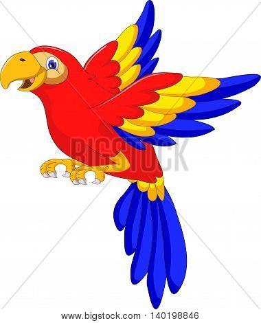 macaw bird cartoon flying for you design