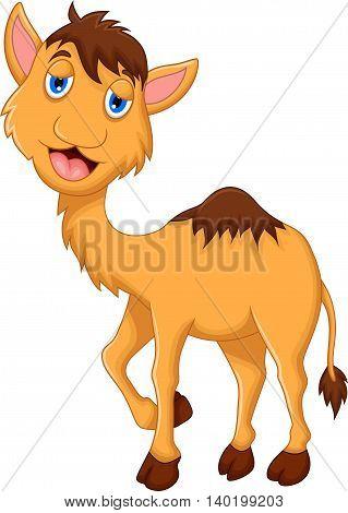 cute camel cartoon posing for you design