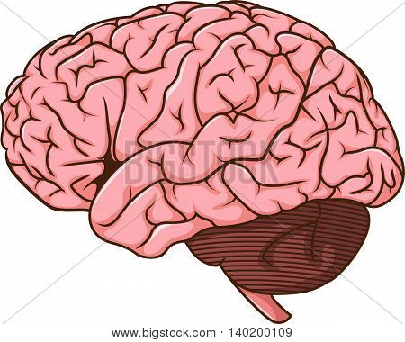 cute human brain cartoon for you design