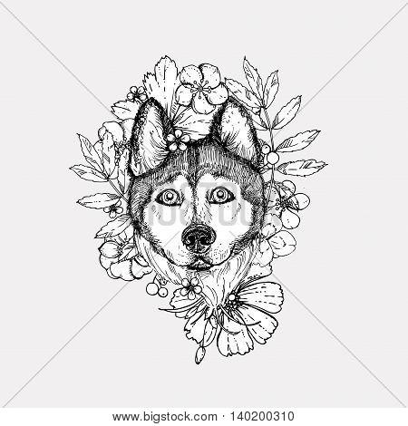 Hand drawn vector illustration dog husky. sketch. Vector eps 8