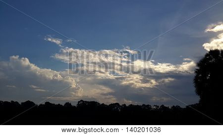 sunlit pile of glowing cumulus clouds over low horizon, sugar palm silhouette on the right side of photo, Songkhla, Thailand