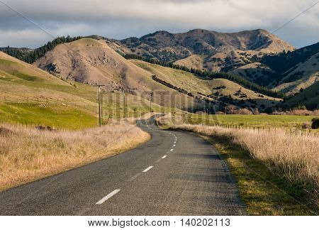 country road meandering across grassy hills in New Zealand