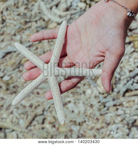 Closeup Of Star Fish In Girl 's Hand At Tropical Beach. Journey  And Leisure Concept. Shallow Depth