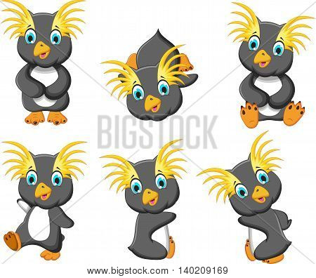 set character of king penguins cartoon posing