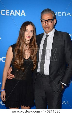 LOS ANGELES - JUL 19:  Jeff Goldblum at the Oceana Presents Sting Under The Stars at the Private Home on July 19, 2016 in Los Angeles, CA