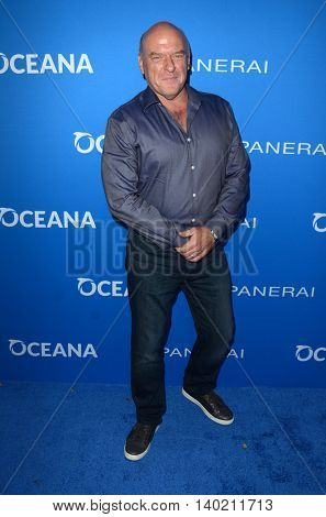 LOS ANGELES - JUL 19:  Dean Norris at the Oceana Presents Sting Under The Stars at the Private Home on July 19, 2016 in Los Angeles, CA