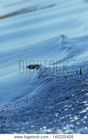 Water Ripples On A Lake