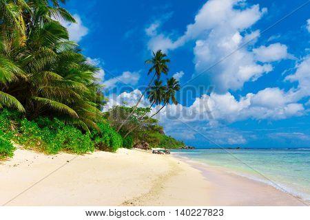 Summertime Shore Landscape