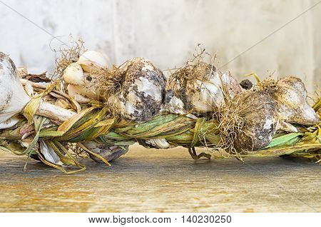 bunch of organic garlic on wooden background closeup